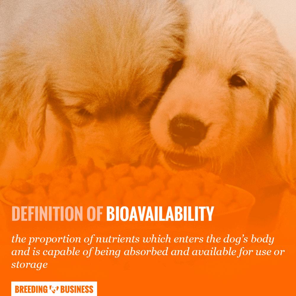 bioavailability of dog food