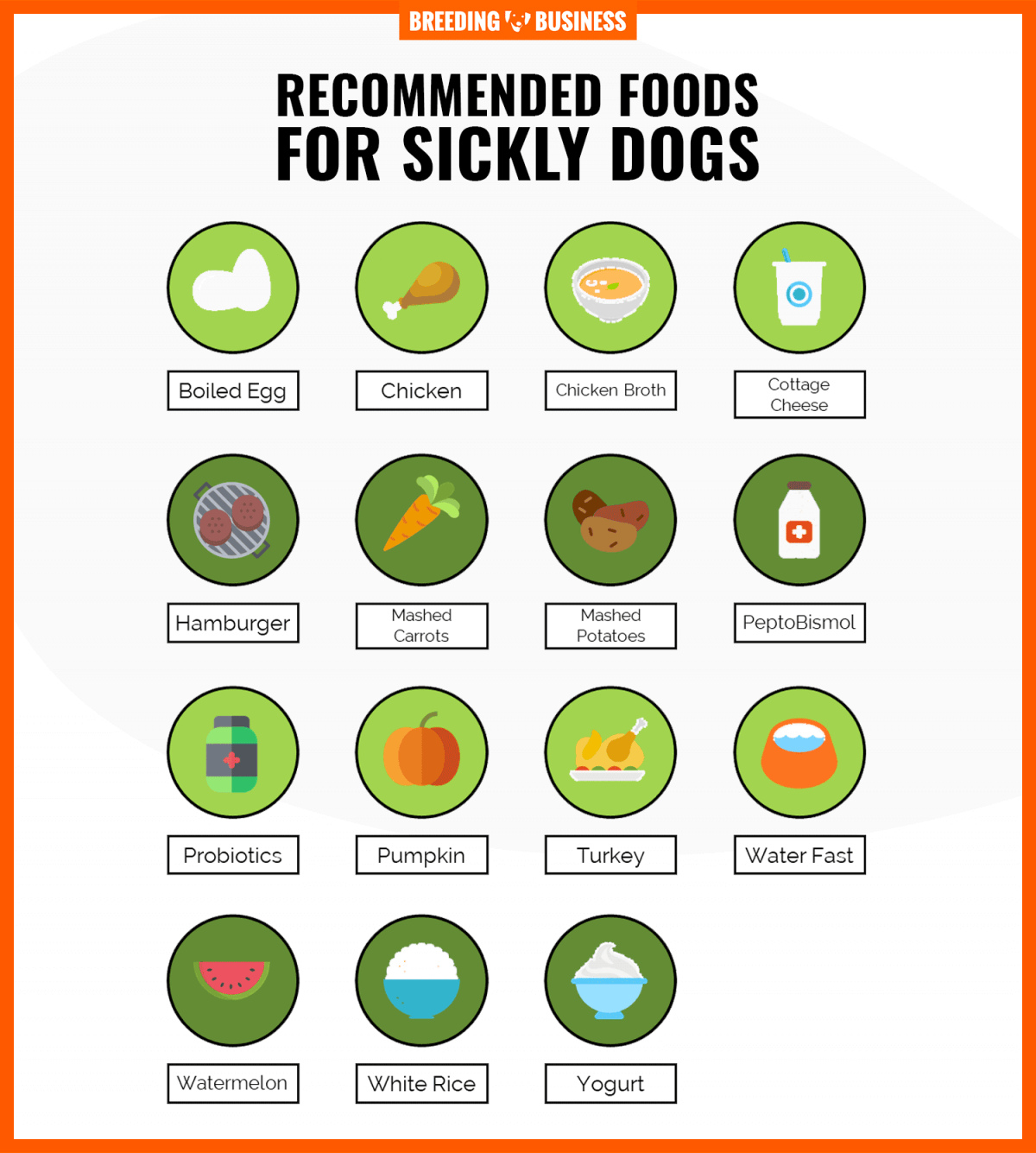 best foods for sick dogs